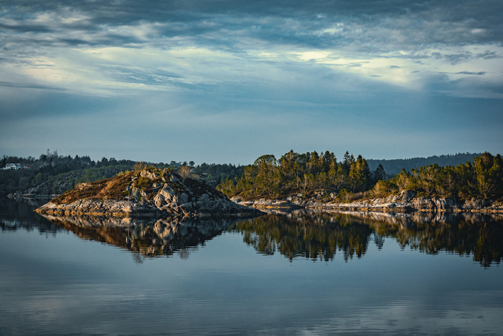 fjordy